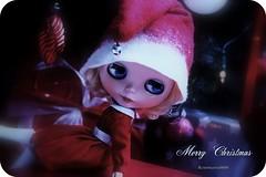 Vrolijk Kerstfeest !!!