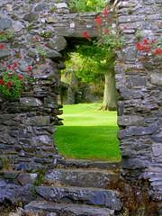 Through the door (seanfderry-studenna) Tags: county old flowers trees ireland windows irish green tower castle history nature grass stone ancient natural erin stonework north down eire historic historical walls northern doorways ulster dundrum eireann