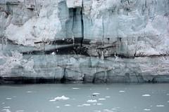 Glacier Bay (skelly10 (lori.yung)) Tags: blue alaska glacierbay