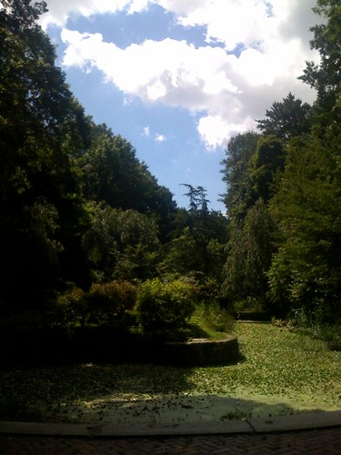 """The brain glue becoming unstuck and stumbled upon the lagoon, my favorite """"Great Expectations"""" nook of Prospect Park."""