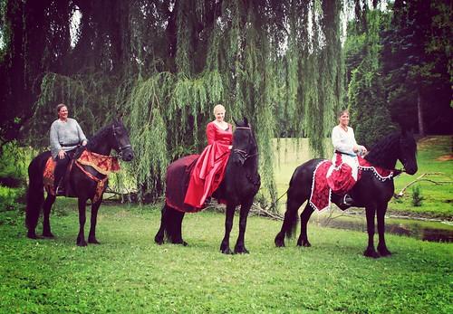 three black horses