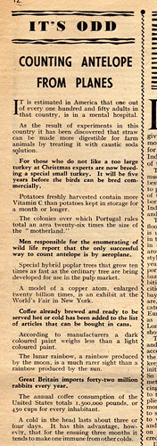 Odd Facts from Modern Wonder Magazine 1939