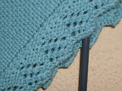 easy blanket. lace detail