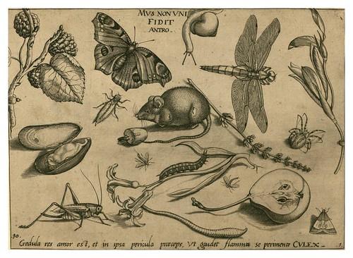 004-Archetypa studiaque patris 1592