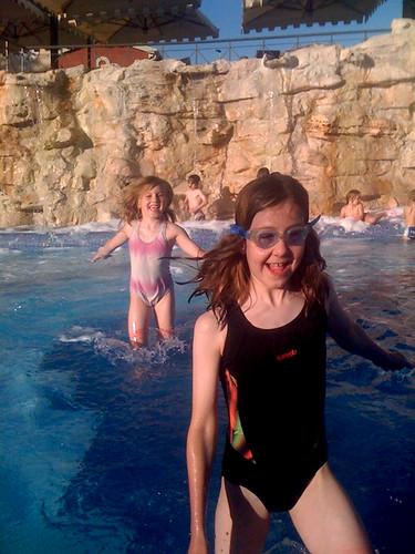 Reidlets in pool
