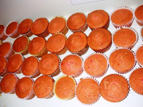 50... Er... 48 Cupcakes