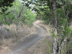 A typical trail.