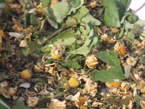 apple leaf/twig, chamomile, nettle and lemon balm