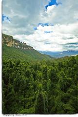 (Abdulaziz AlAli) Tags: blue mountains art canon eos photo picture australia photograph alali abdulaziz  mywinners  colorphotoaward aplusphoto abdulazizalali 5dmarkii wwwalaliphotocom alaliphoto wwwalaliphotonet