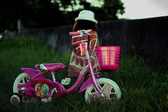 sabi-39 (SABITERU) Tags: pink summer sun hat bike japan kids children eos japanese kid child place princess bokeh vivid disney   osaka cinderella  setting  grassy