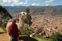 Peru - über den Dächern von Cusco - Junge mit Lama  - 9/616 (roba66) Tags: me peru cusco inka lama junge anden südamerika qosqo beautifulphoto perucusco andenhochland dragonsdanger atomicaward inkahauptstadt quesqu perurundumcusco