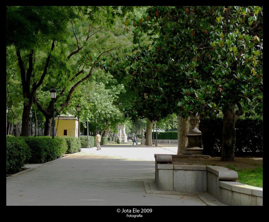 Paseo del Prado V