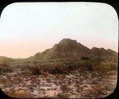 Foothills of Golis Mountain range (The Field Museum Library) Tags: africa expedition mammals somalia zoology 1896 carlakeley specimencollection dgelliot golismountain