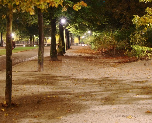 path in the night