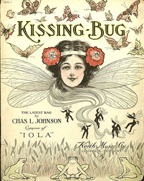 kissing bug..