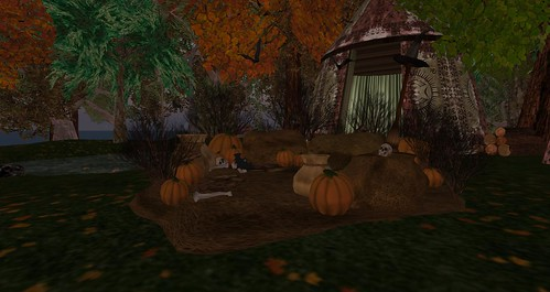 Wild Island ready for Halloween
