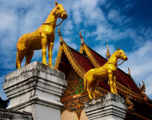 Chiang Mai 04