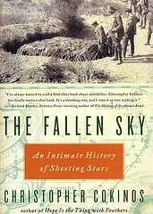 fallen-sky-cover