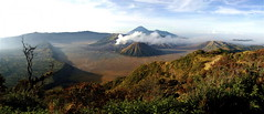 MT BROMO (Claude  BARUTEL) Tags: indonesia volcano java panoramic bromo