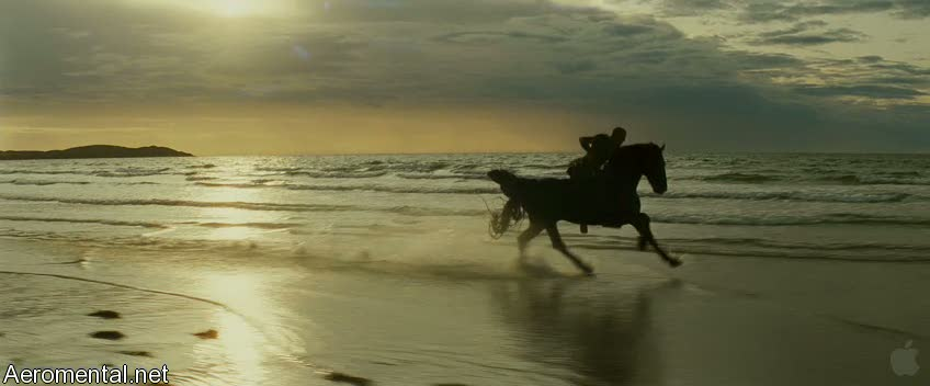 Clash of the Titans Black Pegasus running on the beach