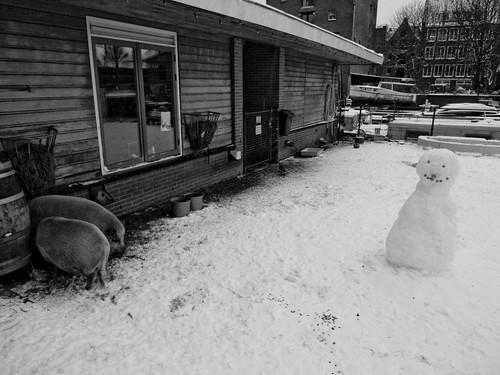 snow  amsterdam_19