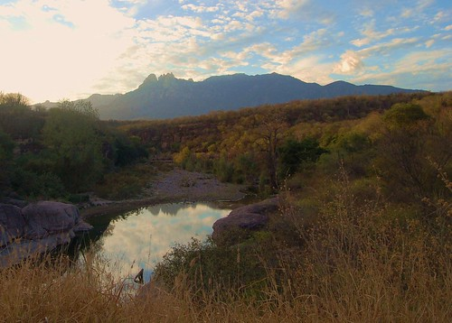 Cuchujaqui River by robyn tinus----