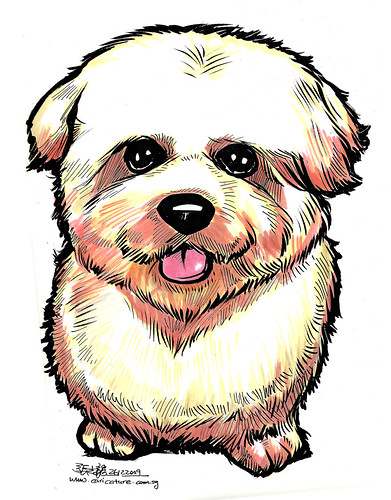Dog caricature in colour A4