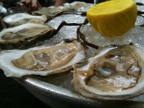 Oysters. Not fried.