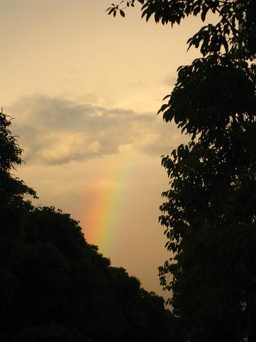 最后的彩虹