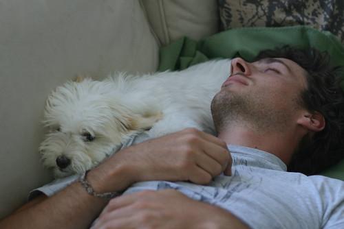 Cuddle Pup