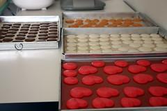 Macaron Class 19