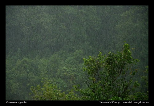 Monsoon in Agumbe