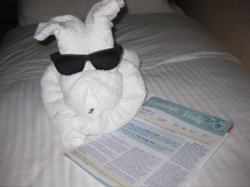 Cruise Towel Bunny