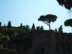 FILE0046 (avinashkunnath) Tags: rome baths caracalla