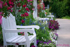 May the flowers fill your heart with beauty, and may hope forever wipe away your tears. (suesue2) Tags: vacation michigan mackinacisland grandhotel flowergarden suesue2 amazingmich suefraserphotography