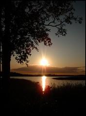 Close to a sunset (Kirsten M Lentoft) Tags: sunset sun lake reflection tree silhouette denmark værløse søndersø infinestyle kirstenmlentoft