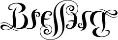 """""""Brellim"""" Ambigram"""