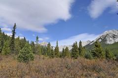 Johnston Canyon (cq275) Tags: mountain clouds banff canadianrockies johnstoncanyon inkpots