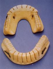 prothese dentaire en dent d\'hippopotame ivoire