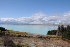 Lake Pukaki (knsalim) Tags: newzealand mountcook 30september2009