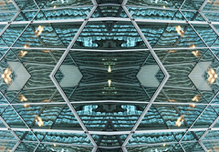 MIRRORED_Warbled Glass_r2 (jeeefer) Tags: chicago abstract strange reflections weird order rorschach center symmetry mirrored symmetrical balance 4square psychedelic bizarre symmetrics equilibrium absorbing meditative duplication centrality digitalpsychiatry