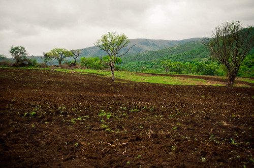Africa November 2009-114