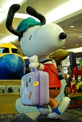 traveling snoopy