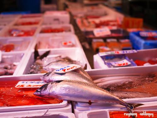 GXR_Tsukiji_20 (by euyoung)