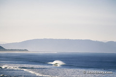A lone wave peaking at RSL, on the South Arm peninsular, in Tasmania, Australia. (Sean Davey Photography) Tags: pictures seascape color green nature water horizontal glitter photography shiny energy solitude surf power wave australia tasmania coastline dreamy serene curl glassy shimmer peacefulness calmness lineup greenenergy greenpower oceanwave seawave oceanswell southarm seandavey oceanpower seaswell goatsbeach photographyfineart finephotographyart curlingwave wavesenergy seawaveenergy oceanenergy oceanwavepictures seandaveyphotography