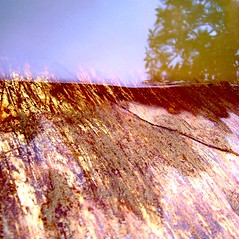 Water's Edge (eterem) Tags: color reflection tree water metal fire earth air dirt edge elements squared