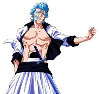 Personaje Grimmjow Jeaquer 4203897461_0bbb71919d_o
