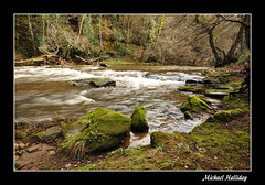 THERAPY (Michael Halliday) Tags: trees winter water river flow nikon rocks derwentvalley sigma calm rapids northumbria flowing northeast tranquil d90 sigma1020 nikond90