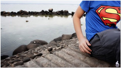 tariq (HicoooL) Tags: blue sea sony waters tariq nex5