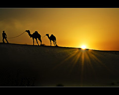 heading home before the sun explodes.. (explored) (PNike (Prashanth Naik..back after ages)) Tags: sunset orange sun india man animals silhouette interestingness interesting sand nikon desert dunes explore sunburst sunrays camels sanddunes jaisalmer rajasthan headinghome thardesert explored lightexplosion d7000 pnike jayselmer yahoo:yourpictures=landscape